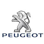 Peugeot  Штатные автомобильные видеокамеры