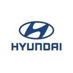 hyundai  Штатные автомобильные видеокамеры